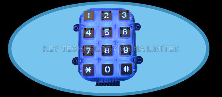 12 keys compact format IP65 dot matrix keypad